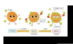 高須様記事no19OL_04_03